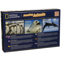 Borella - Puzzle 3D National Geographic Pinguini