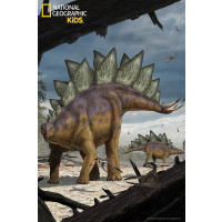 National Geographic NG10811 - Puzzle 3D Stegosauro